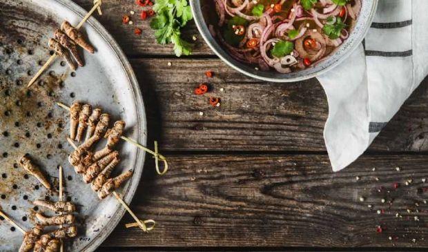 Insetti da mangiare: EFSA ok all'uso delle tarme della farina a tavola
