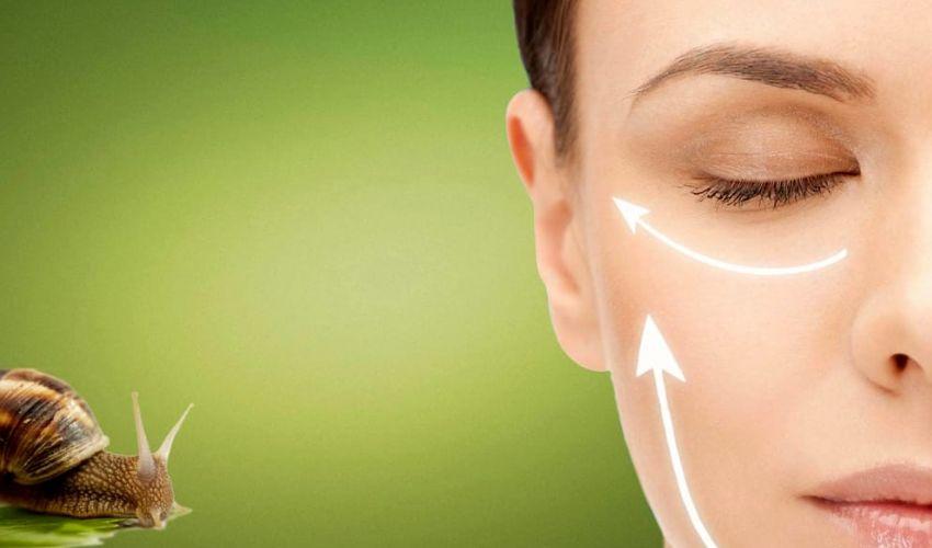 Bava di Lumaca: costo e benefici sulla pelle contro rughe e acne