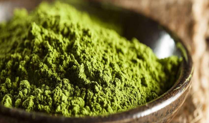 Tè verde matcha: cos'è, proprietà e benefici, controindicazioni