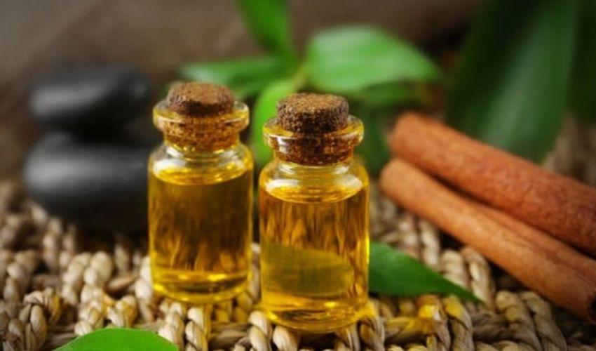 Tea tree oil: prezzo 2020, come e dove si usa, benefici e proprietà