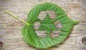 Migliori detersivi Eco Bio 2020: lavatrice lavastoviglie bucato casa