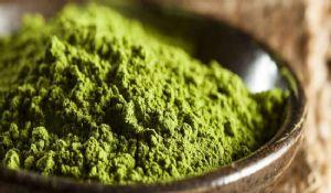 Tè verde matcha: proprietà, benefici dimagranti e controindicazioni