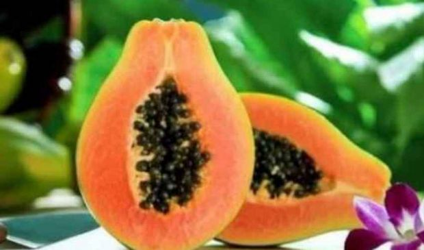 Papaya fermenta: cos'è, benefici e proprietà controindicazioni, prezzi