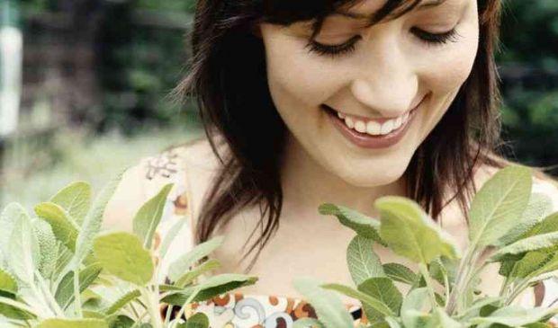 Salvia per capelli bianchi, grigi, scuri o grassi: come funziona e uso