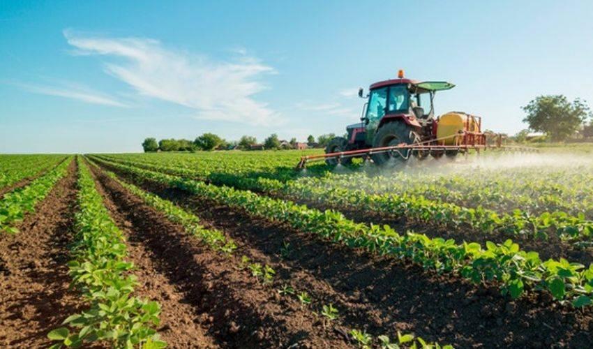 Bonus stagionali agricoli 2021, grido di aiuto: ingiustizia da sanare