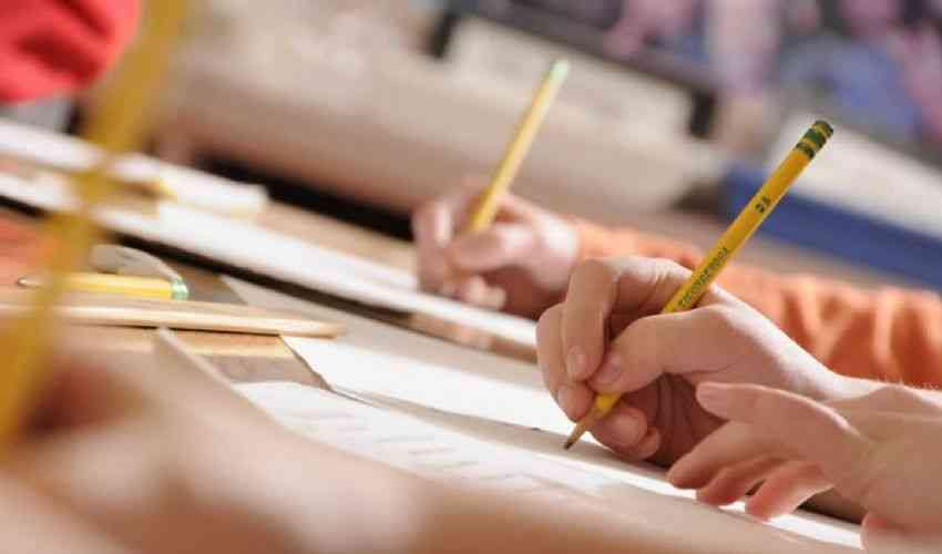 Navigator 2019: bando ANPAL cosa studiare per il test del concorso