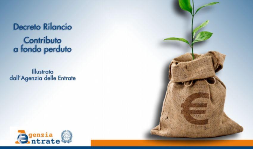 Fondo perduto agenzia entrate: domanda dal 15 giugno, il modulo pdf