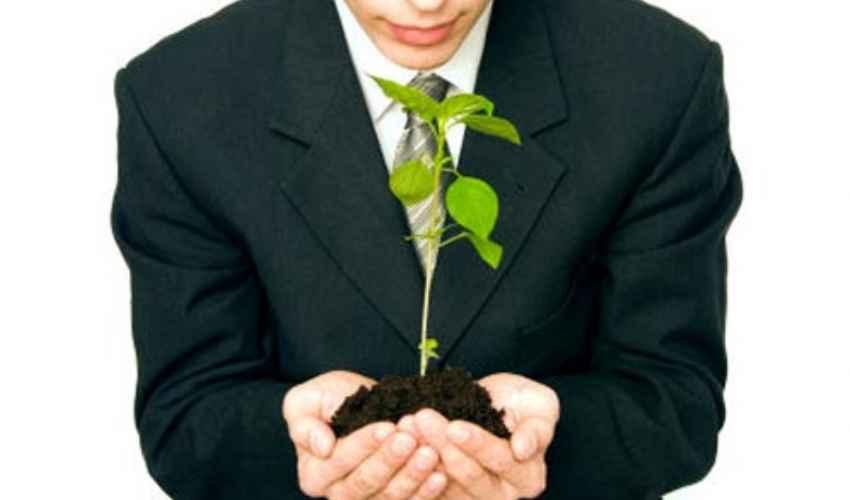 Società semplice agricola: cos'è, costituzione, agevolazioni e costi