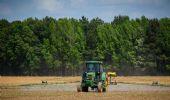 Bonus agricoli 2021 nel Dl Sostegni bis a maggio, conferma Patuanelli