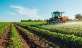 Decreto Sostegni bis 2021: stagionali, sportivi e bonus agricoli