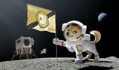 Dogecoin sulla Luna: missione SpaceX e GEC pagata in criptovalute