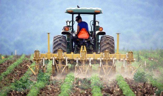 Bonus agricoli 2021, Sostegni bis: ipotesi importo 1.200 o 2.400 euro