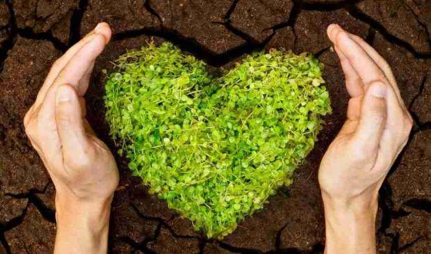 Esenzione Irpef agricola 2021 e bonus contributi agricoltura under 40