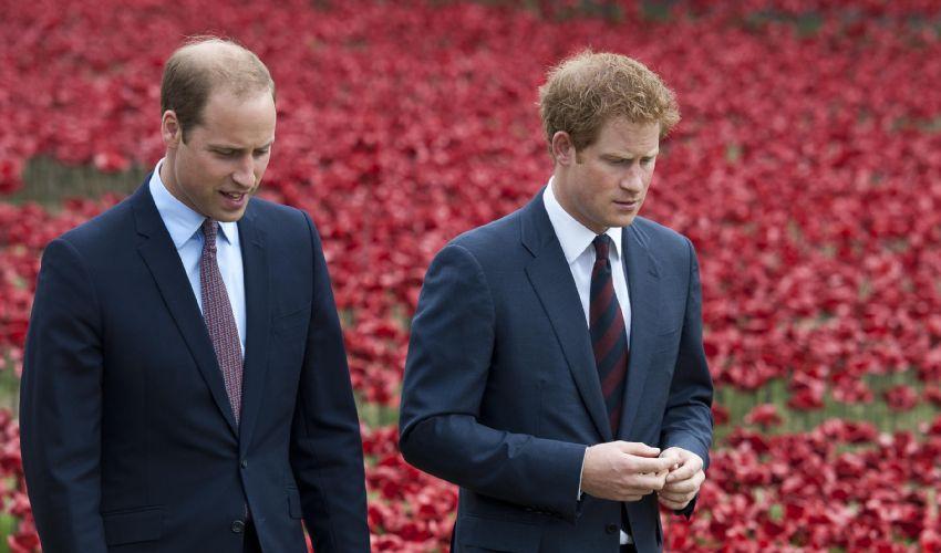 Morte Principe Filippo, il ricordo di Harry (ora a Londra) e William