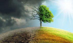 La situazione ambientale in Italia. I dati del report ISPRA