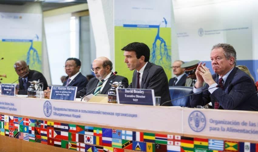 Maurizio Martina alla FAO: nuovo inizio come Vice-Direttore generale
