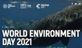 Giornata mondiale dell'ambiente 2021: tema, obiettivi ed eventi