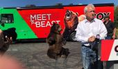 Usa, Political animal: John Cox e l'orso Tag in campagna elettorale