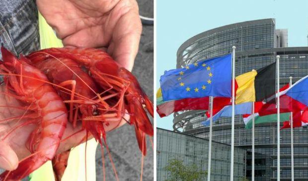 """La """"battaglia del gambero rosso"""": la Liguria contro l'Unione europea"""
