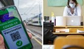 Green pass: cosa prevede il nuovo decreto per scuola e trasporti