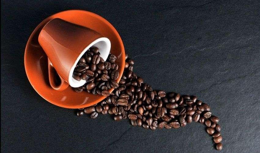 Perché il caffè da solo non basta per svegliarsi. Lo studio Usa