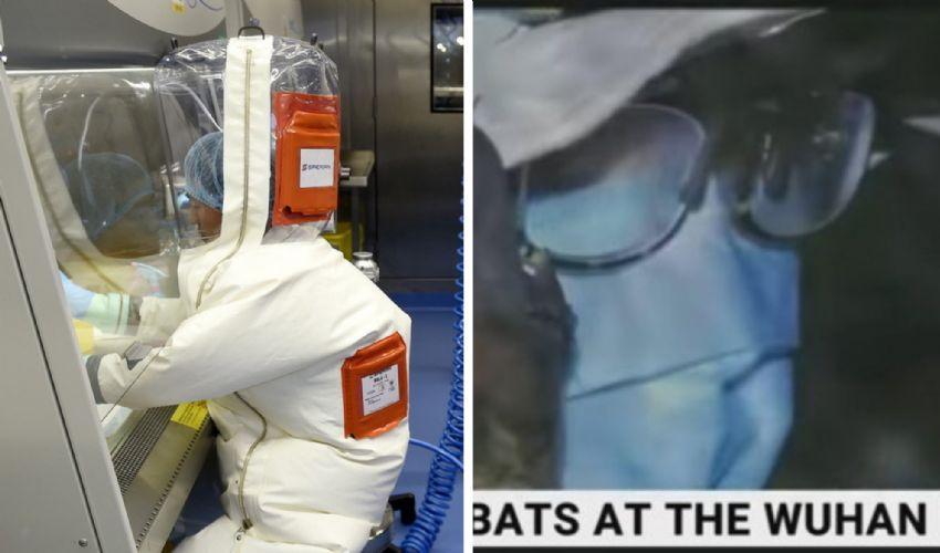 Covid, origine del virus: pipistrelli nel laboratorio di Wuhan