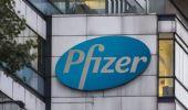 Covid, in arrivo una pillola di Pfizer che evita l'ospedalizzazione