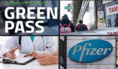 Green Pass, boom di certificati di malattia. È sempre corsa ai tamponi
