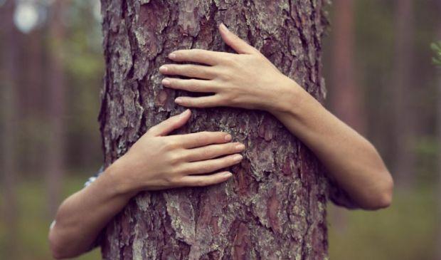 Green psychology o Ecopsicologia: perché ne abbiamo bisogno adesso
