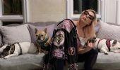 Ritrovati i cani di Lady Gaga. A chi ha pagato la taglia? È mistero