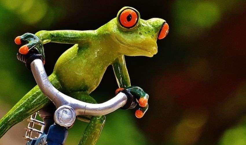 Bonus mobilità 2020: click day 3 novembre bonus bici e monopattini