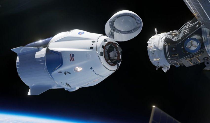 SpaceX, Elon Musk porta vermi e calamari sull'ISS: perché e come farà